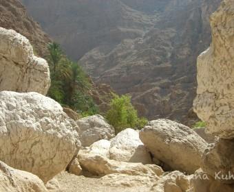 Wadi Shab. Foto: cku