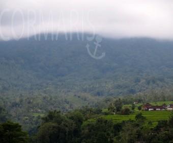 Über den Bergen sammeln sich die Wolken. Regen! Foto: cku