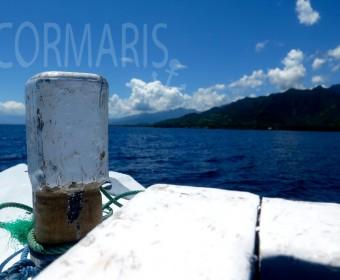 Eine Seefahrt, die ist lustig... und hier fast immer ohne Wellen. Foto: cku