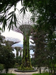 Gardens by the bay. Foto: cku