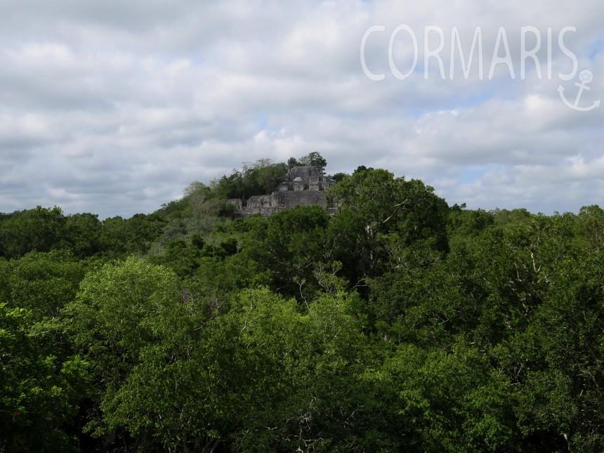 Mitten im Dschungel: Maya-Pyramiden von Calakmul. Foto: cku