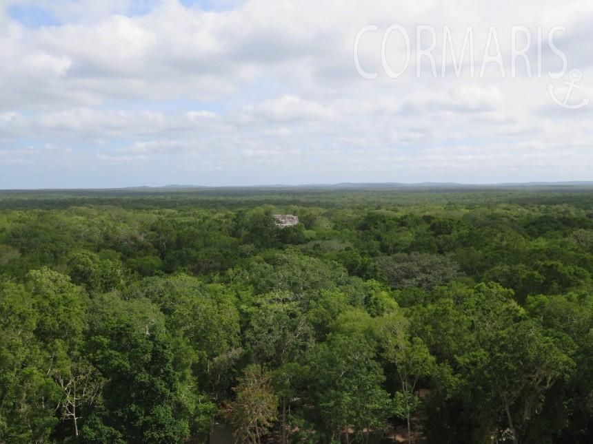 Erst auf die Pyramiden klettern, dann über die Weite staunen: Calakmul. Foto: cku