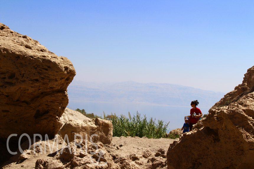 Blick von En Gedieh in Richtung Totes Meer. Foto: cku