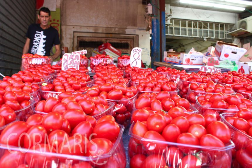 Tomaten auf dem Kammel-Markt von Tel Aviv. Foto: cku