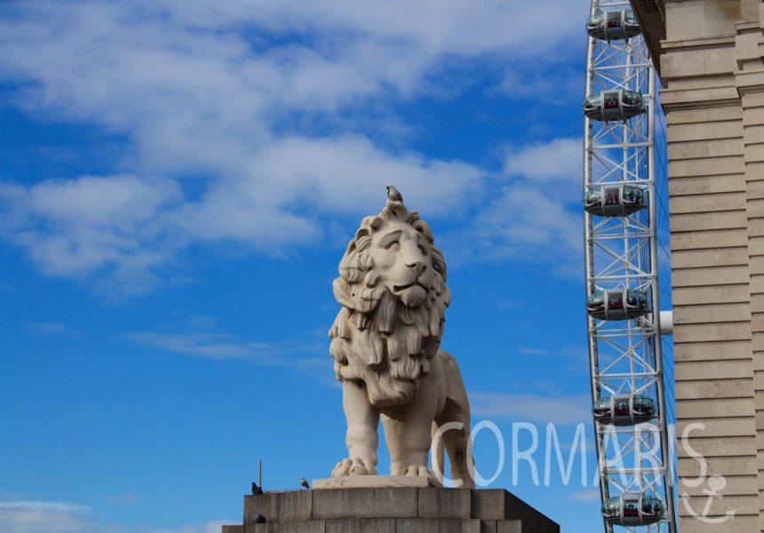 Löwen, überall Löwen! Foto: cku